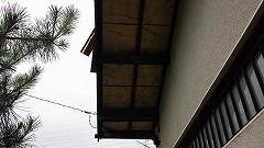 20130711_134747_mini.jpg